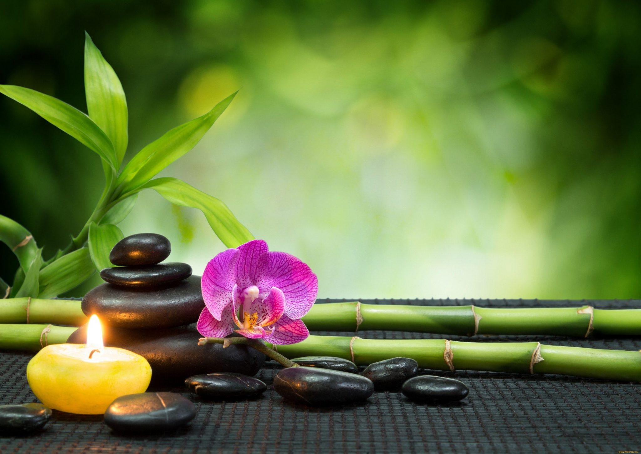 Como Harmonizar Ambientes com Feng Shui