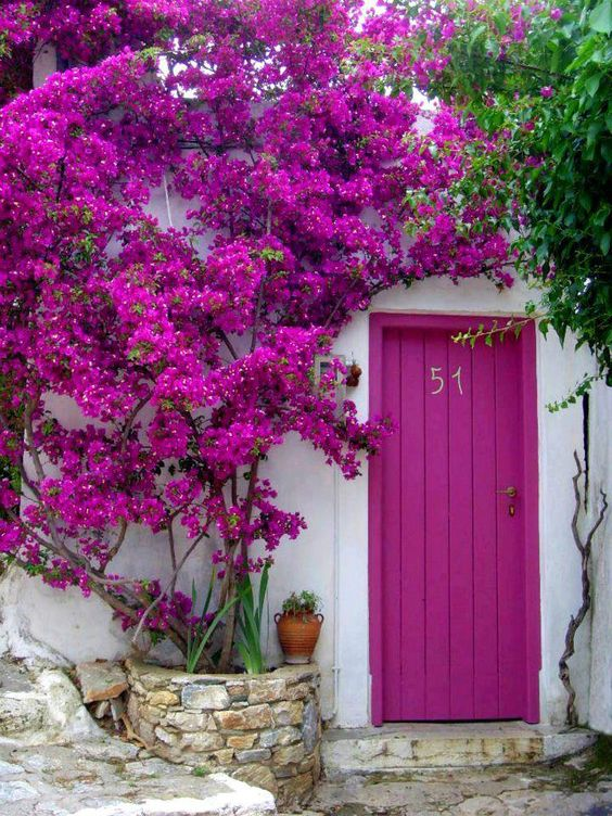 ideias-portas-coloridas-8